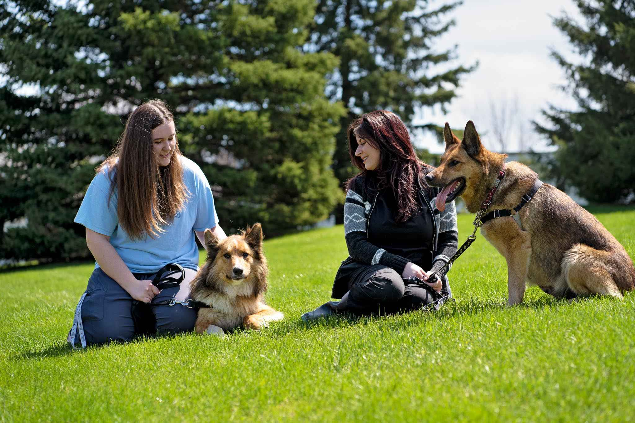 Photo of two Animal Care staff members with 2 dogs on leashes outside the Kitchener Centre