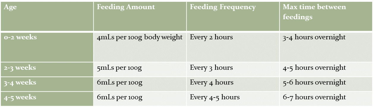 Feeding Chart