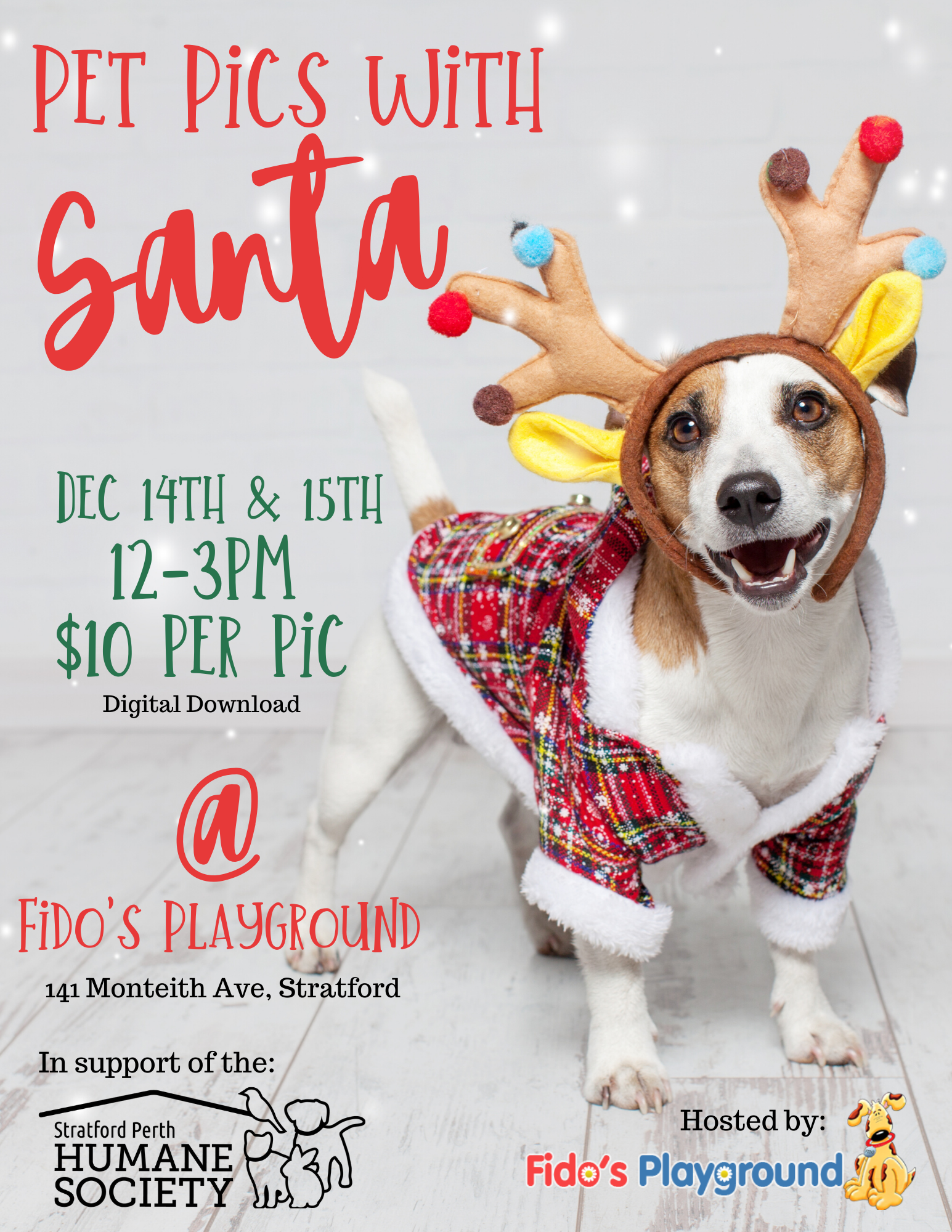 Pet Pics with Santa at Fido's Playground