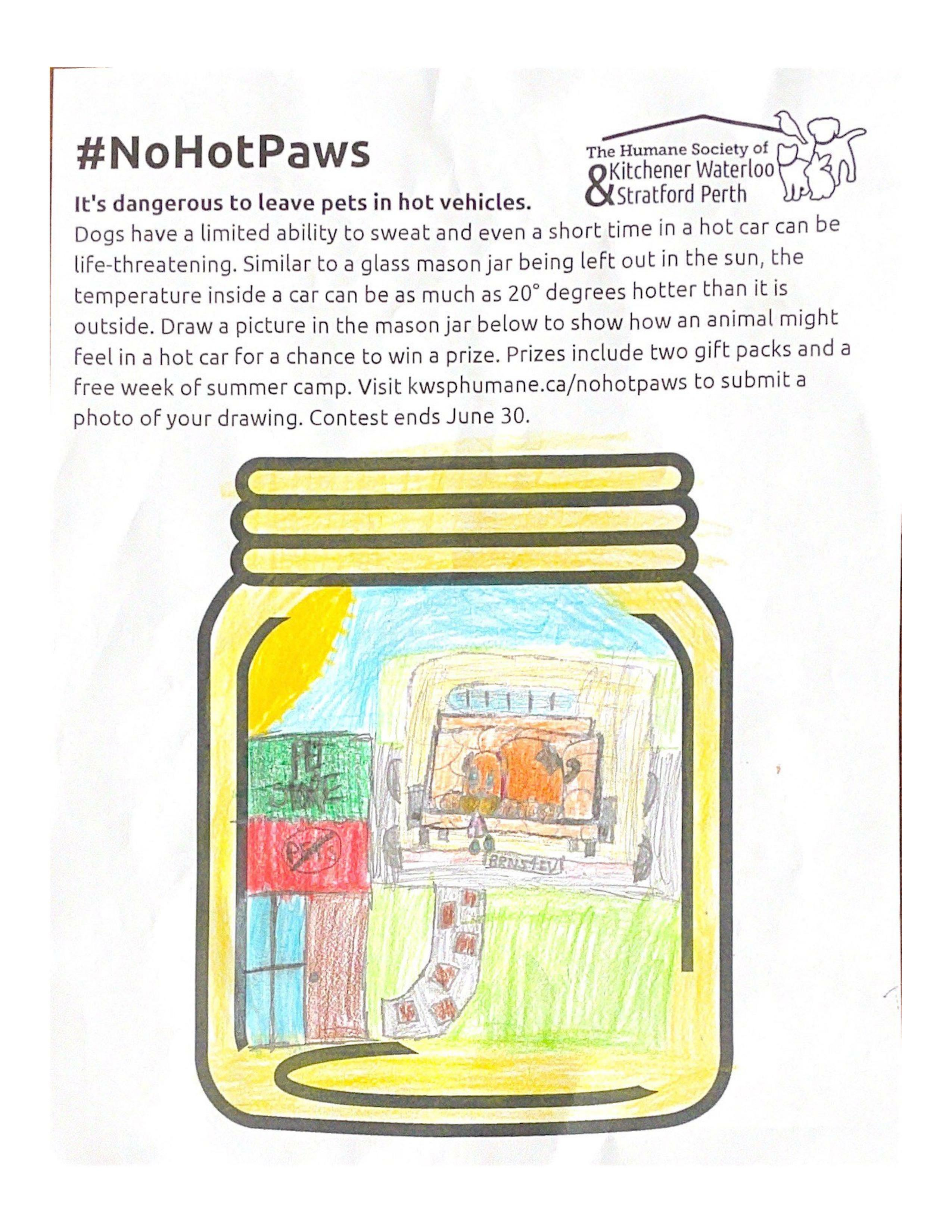 Dog in a car on a hot sunny day while his owner is in the pet store that does not allow animals and he is left alone in the hot car on a hot sunny day - Aly Elinesky (age 10)