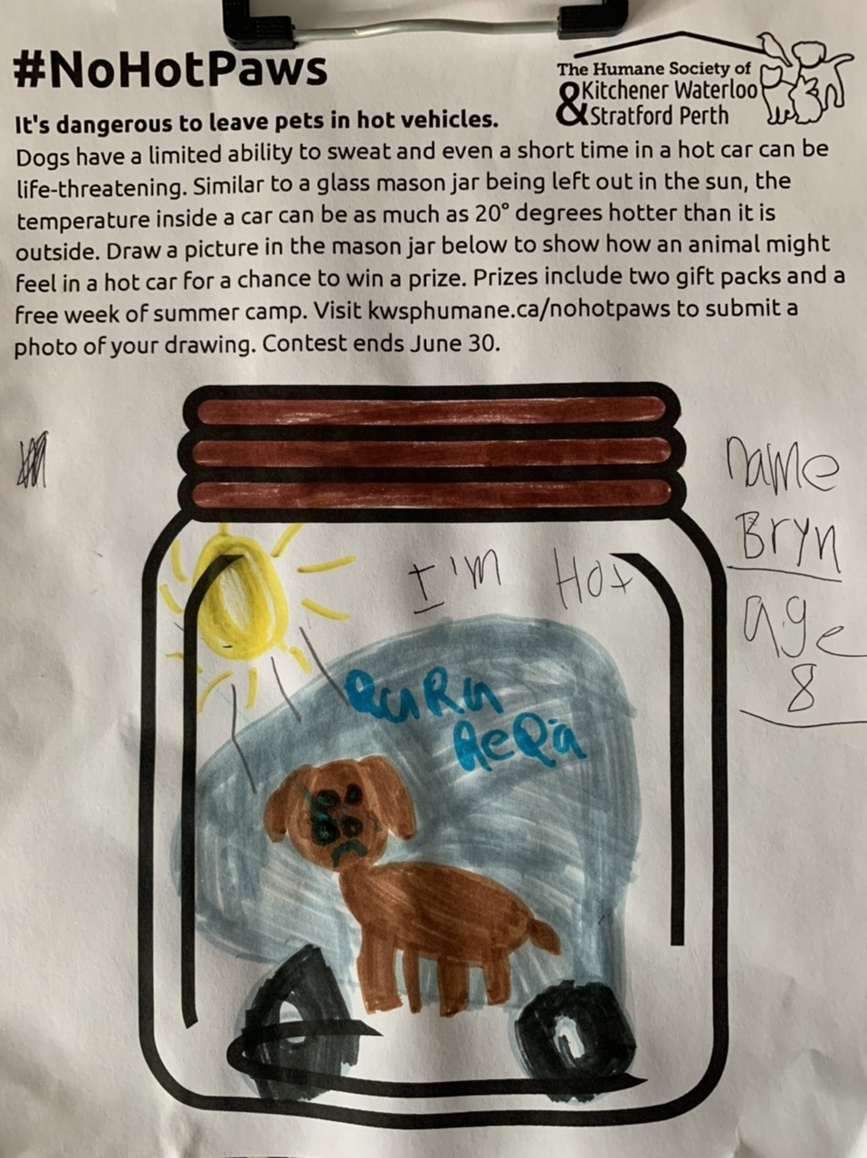 A dog in a car on a hot, sunny day who needs help by Bryn Baker (age 8)