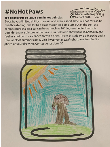 This is a picture of a dog that has been left in a hot car.  He has just gotten out of the car but is still feeling very hot.  He is panting heavily and losing saliva.  He is tired, sad and has no energy.  Please don't leave your pet in a car - Claire Hough (7)